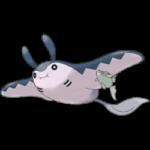 【ポケモンGO】鉛のような重さの激レアマンタイン登場!?中身がぎゅうぎゅうに詰まっとるwwwww