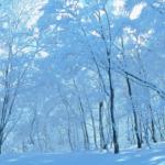 【ポケモンGO】寒過ぎてウォーキングがてらジムバトルも厳しい季節になってきたな…