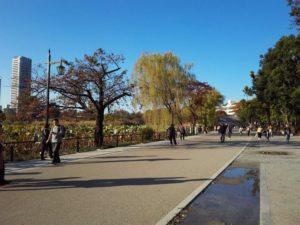 【ポケモンGO】※朗報?悲報?※不忍池ミニリュウの湧き方が変わり普通の公園になってたwwww