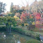 【ポケモンGO】ラプラス捕獲の穴場スポットは塩釜神社周辺!?仙台駅から最寄り駅まで約30分!