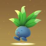 【ポケモンGO】ナゾノクサが4連続孵化する大草原バグ発生!?これぞセルフバグwwwww