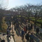 【ポケモンGO】天保山&南港でヨーギラス、ミルタンククラスのレア湧きは確認されているのか!?