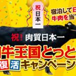 【ポケモンGO】鳥取イベントでARフォトコンテスト開催!和牛を当てれば遠征費用回収!