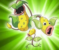 【ポケモンGO】今後ウツボット以外で有能な毒タイプのポケモンって登場するの!?