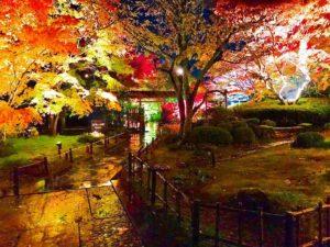 【ポケモンGO】石巻以外で宮城県のラプラス出現+観光スポット+美味い飯教えてくれ!!