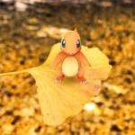 【ポケモンGO】代々木公園のヒトカゲの巣の時給がぶっ飛んでる!?リザードン進化余裕すぎて草