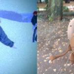 【ポケモンGO画像】雪の中のTERUロスさんが完全一致すぎて腹痛いwwwwwwwwww