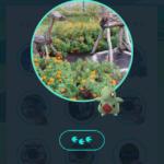 【ポケモンGO】ヨーギラスは草タイプイベント中に出現するのか!?ミニリュウ絞りのトラウマが…