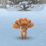 【ポケモンGO】第三世代の出現数が少ない!?晴れでも雪でもロコンが湧くという現象wwwwwwww