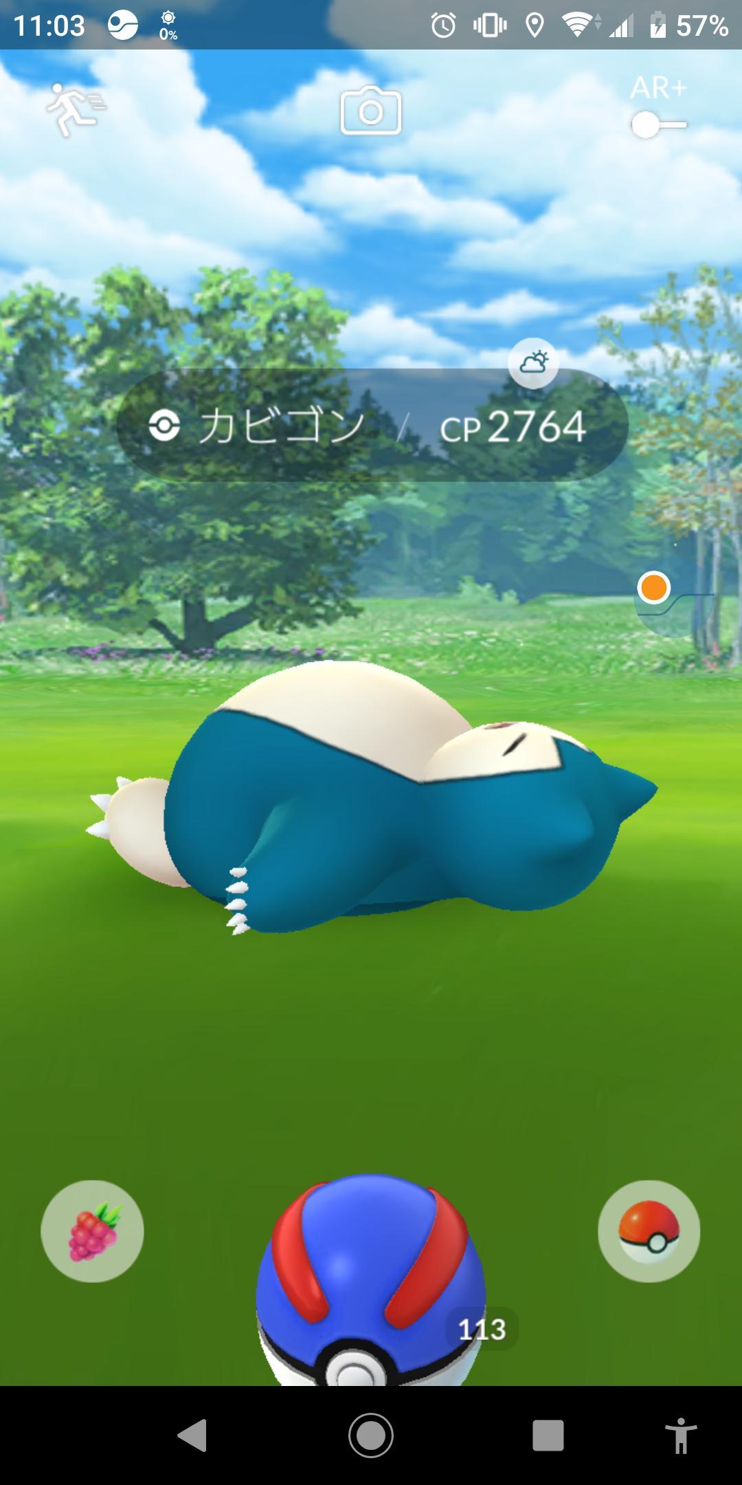 寝ているカビゴン